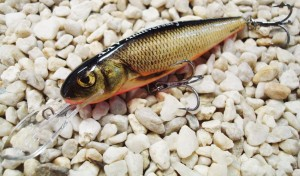 Wobler SALMO Roach Bloody Real Grey Dace
